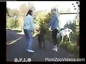 Bestiality Young zoo Porn